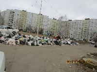 За несвоевременный вывоз мусора – штраф