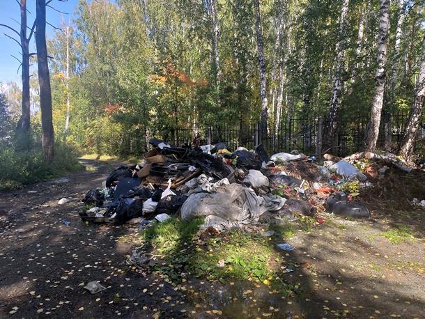 У старого кладбища растёт куча мусора